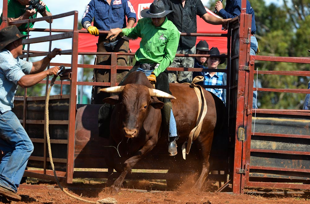 Expect to find Rodeo in Blue Bull Country in South Africa ...  |Texas State Sport Rodeo